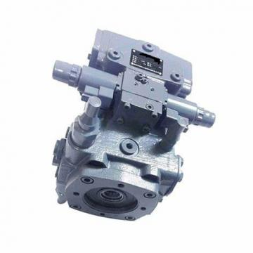 Rexroth A10VSO100 Hydraulic Piston Pump Parts (Repaire Kit/ Rotary Group)