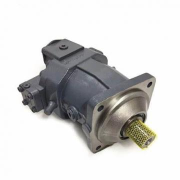 Hydraulic Pump and Motor A10vg45 for Rotary Drilling Engineering Machinery