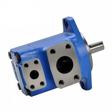 Vickers Double Vane Pump 2520vq/3525vq/4525vq/4535vq 4535V-45A for Injection Machine