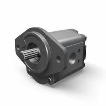200 bar High Pressure Parker Hydraulic Pump Denison T6CC T6DC T6EC T6ED Double Vane Pump for Excavator