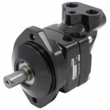 Parker hydraulic motor axial piston quantitative hydraulic pump - F1 series
