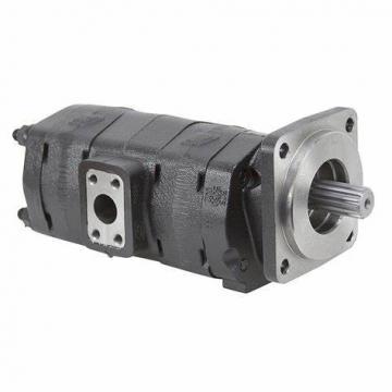 SNCB Internal Gear Pump low noise Injection Molding machine energy saving servo pump replace EIPH pump