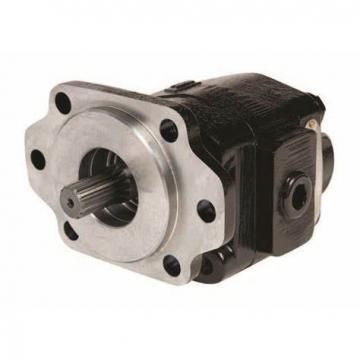 Buzile Bi-Rotational Hydraulic Gear Pump BGP20B697BYAF20-25BAF20-1 for Trucks Similar to Parker P20 Dowel Construction Type