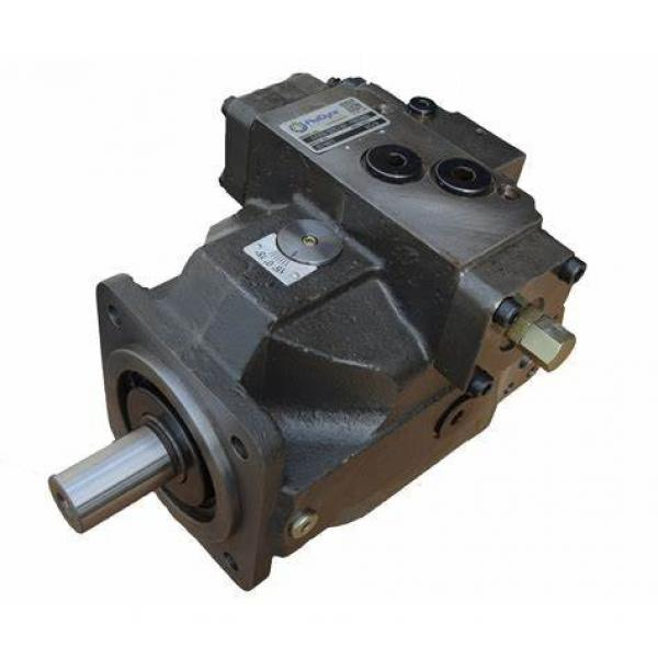 Parker Pavc Series Hydraulic Piston Pump Pavc38 Pavc65 Pavc100 Pavc100b3l4222 #1 image